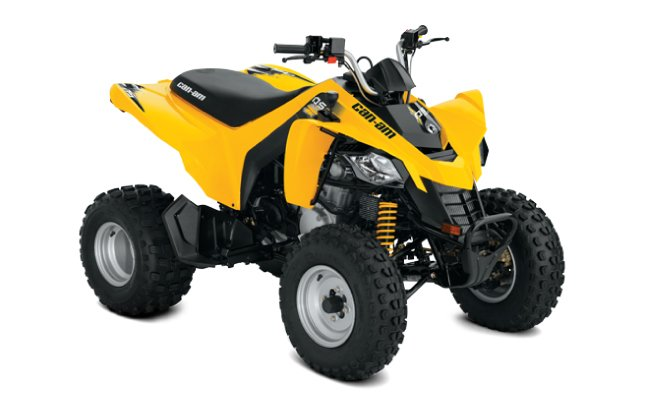 Canam DS 250