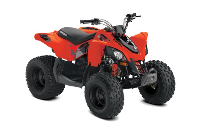 Canam DS 90